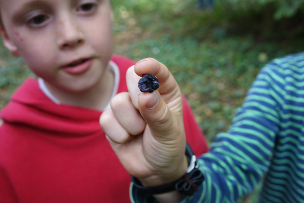 Close-up of a purple berry with two boys in the background